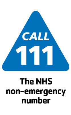 logo for NHS Choices & NHS 111
